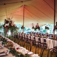 Bos Tents and Events