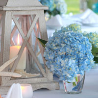 hydrangea-inspiration-board-main