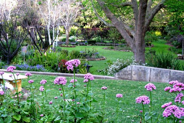 Stirling Cottage Gardens