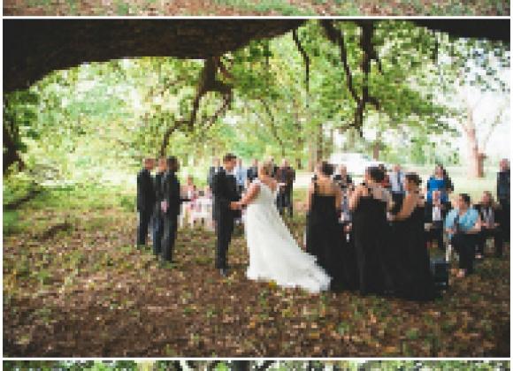 Ella And James's Donnybrook Oak Tree Wedding