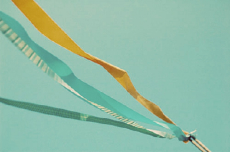 Decorations - Ribbon Wedding Wands