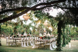 Luxury Weddingss Australia